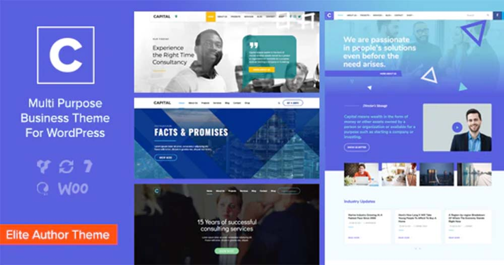 Theme WordPress Capital